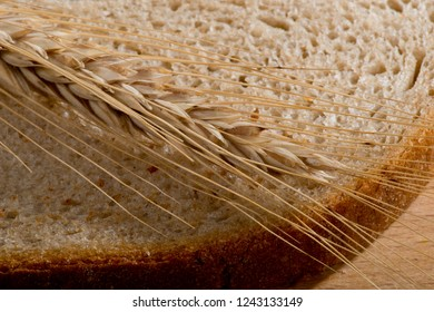 Spike of wheat on the slice of bread