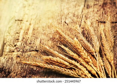 Spikelets of wheat on old wooden table background