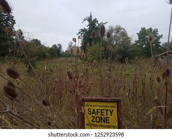 spiky or sharp brown weeds or wildflower teasel plants with yellow safety zone hunting prohibited sign