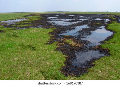 Spilled crude oil on field - nature polution