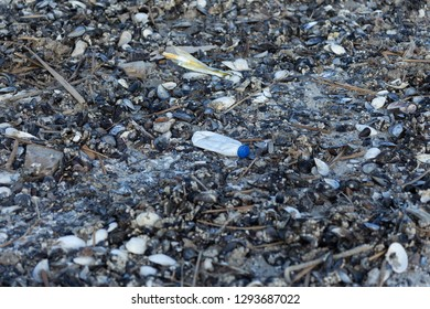 Spilled garbage on the beach of a big city. Empty used dirty plastic bottles. Dirty sea, sandy coast of the Black Sea. Environmental pollution. Ecological problem