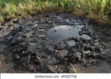 Spills of crude oil on the soil surface - environment pollution.