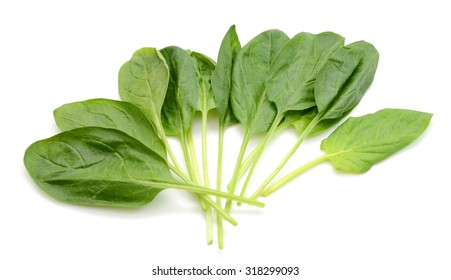spinach leaves close up on white background
