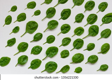 Spinach leaves. Fresh green spinach on a white background. Top view