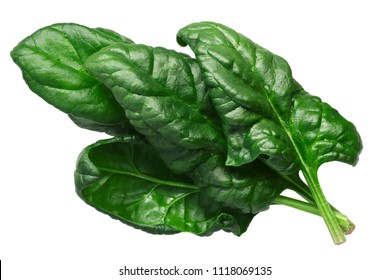 Spinach leaves, fresh (Spinacia oleracea), top view
