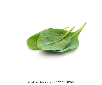 Spinach leaves on white