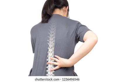 spine bones injury