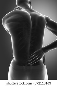 Spine injury pain in sacral and cervical region concept
