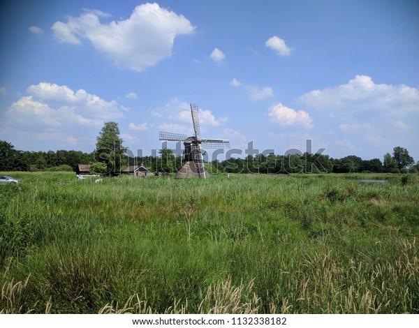 Spinnekopmolen (spider mill) De Wicher + thatched cottage in Dutch peat bog landscape.  A picturesque spot in Weerribben-Wieden National Park, The Netherlands.