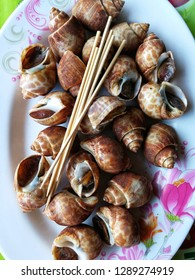 Spiral babylon snail with sauce spicy seafood