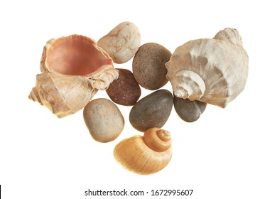 Spiral empty aged seashells and smooth gravel isolated on white background without shadow