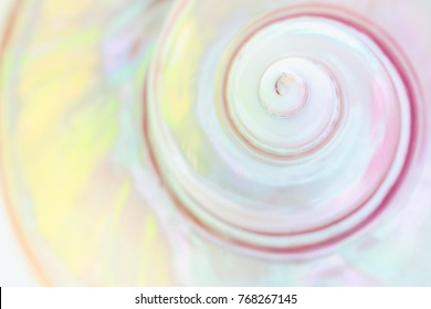 Spiral of Mother of pearl sea shell close up background