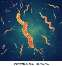 Spirillum bacteria is the cause of stomach ulcers or bacterial diarrhea , Germ infection , 3d illustration
