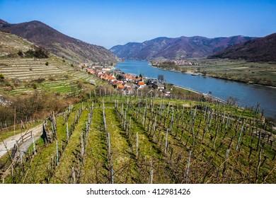 Spitz. Danube river, Wachau valley, Austria.