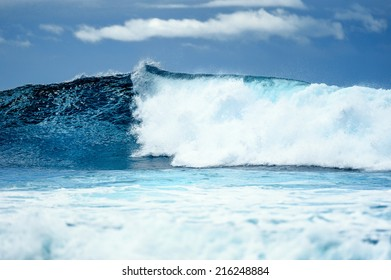 Splash wave on the surface of the ocean