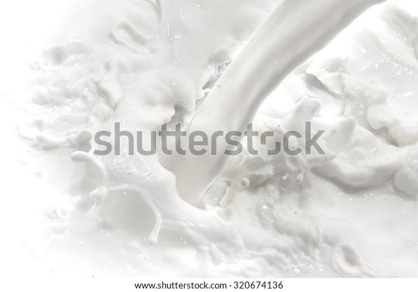 Splash-Milch auf weißem Hintergrund