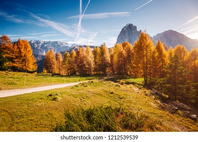 Splendid autumn landscape in Val Gardena. Location National Park Dolomiti, Trentino Alto Adige, province of Bolzano, Italy, Europe. Scenic image of tourist attraction. Discover the beauty of earth.