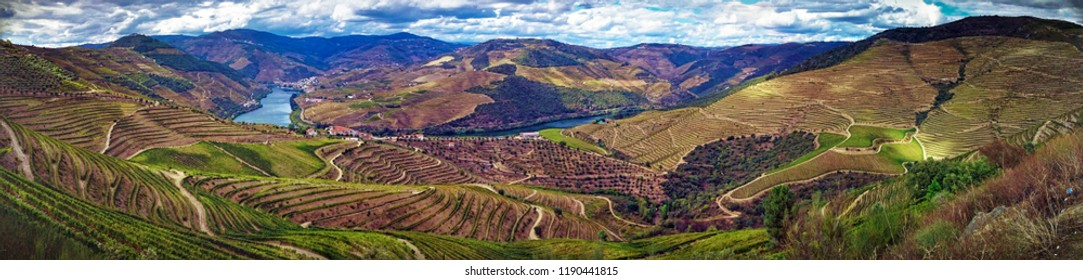 Splendid Douro valley, Portugal