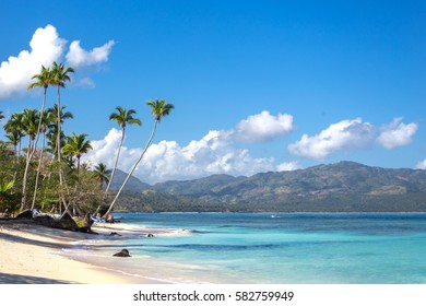 splendid tropical beach Playita, Dominican Republic. Blue ocean, white sand, palm trees