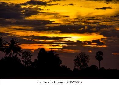 The splendor of the evening sky is yellow.