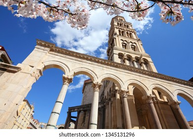 Split city, Croatia. Spring time cherry blossoms.