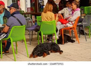 SPLIT, CROATIA - APR 15, 2018 - Dog waits for  its owner at an outdoor restaurant in Split, Croatia