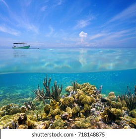 Split view above and under the sea with a coral reef on the ocean floor and blue sky with a boat