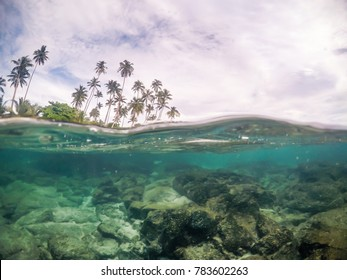 Split view cross section of sea water and palm trees on Upolu Island, Samoa, South Pacific. Rocks and fish underwater in transparent clear water; cloudy sky above, photographed while snorkeling.