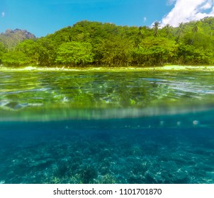 Split view over and under sea surface with lush tropical shore above waterline and sand underwater, El Nido, Philippines
