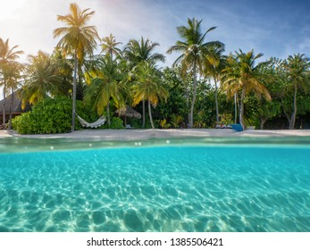 Split view to a tropical beach on the Maldives with palm trees, pristine, clear sea and blue sky