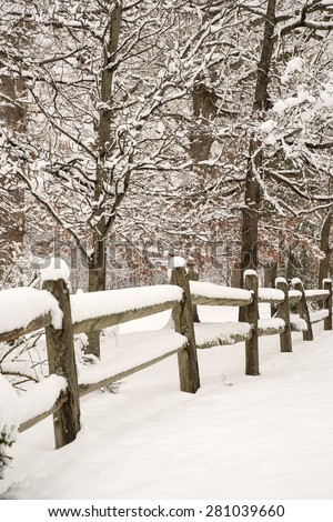 Split-rail fence with fresh snow and snow covered trees