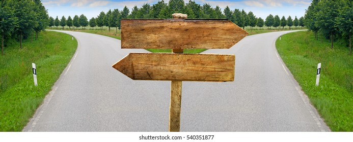 Splitting road with blank crossroad wooden blank signs