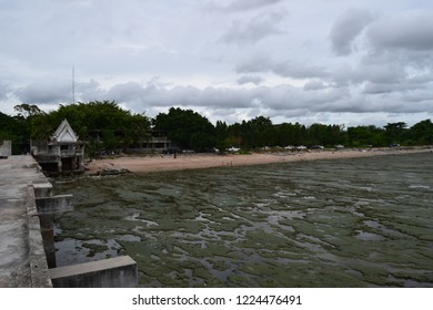 Spoiled sea rotten on beach