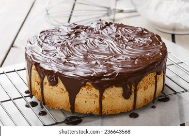 sponge cake covered in chocolate