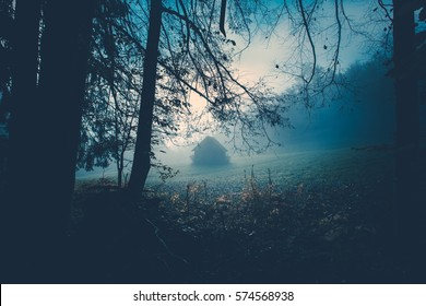 Spooky background with dark forest view with old house