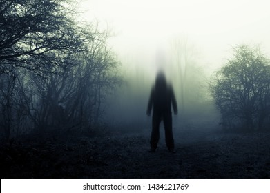 A spooky, blurred, ghostly hooded figure on standing on a path on a foggy winters day. With a muted, old edit.