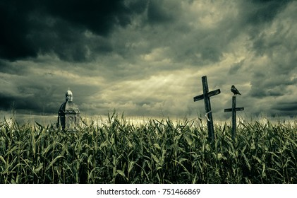 Spooky cornfield at night. A black crow sits on a crucifix and there is a church in the background