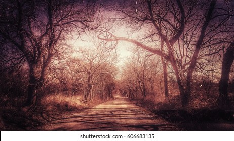 Spooky Country Road