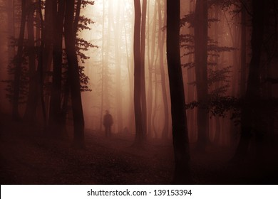 spooky dark forest with creepy man