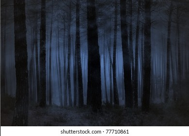 Spooky foggy forest at night
