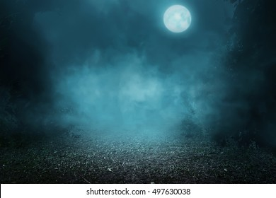Spooky foggy forest on the moonlight