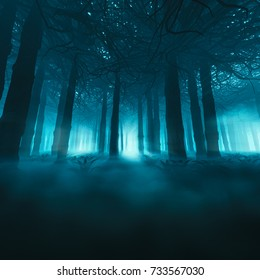 Spooky forest concept / 3D illustration of dark misty forest