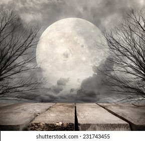 Spooky forest with full moon. Elements of this image furnished by NASA