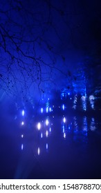A spooky forest at night with lights and reflections