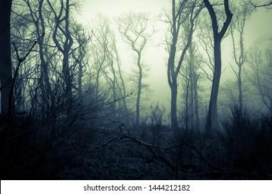 The Best Creepy Landscape Images Gif