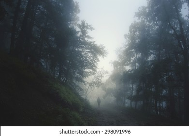 spooky Halloween landscape with man on path in dark forest at night