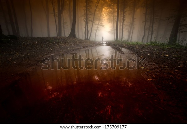 spooky man reflecting in water in surreal dark forest