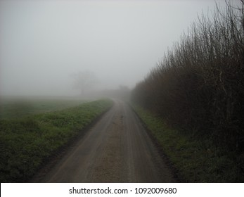 Spooky and misty country lane