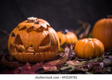 Spooky and scary jack o lantern pumpkin on autumn leaves