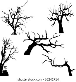 Spooky tree silhouette isolated on white